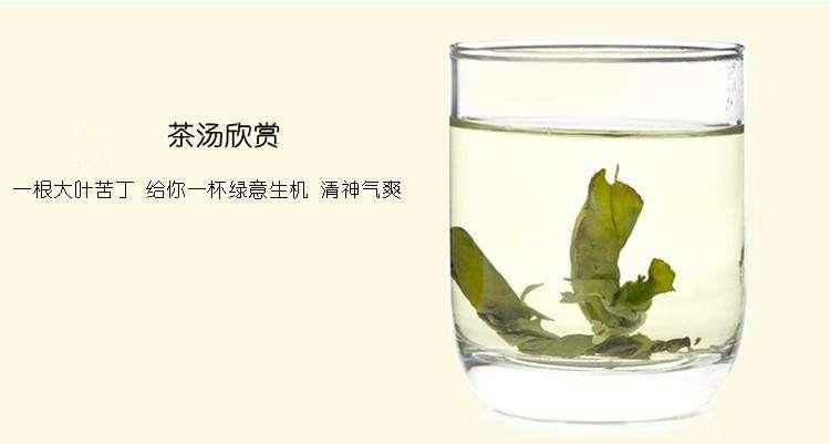 苦丁茶の効果 効能