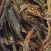 鳳凰単叢茶の葉底