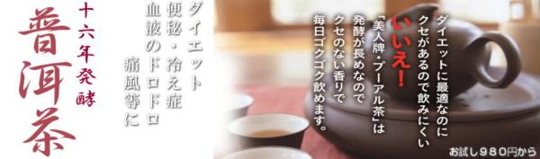プーアル茶 16年醗酵