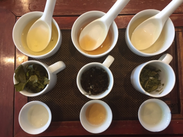 茶試飲イメージ