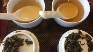 中国茶のティスティング