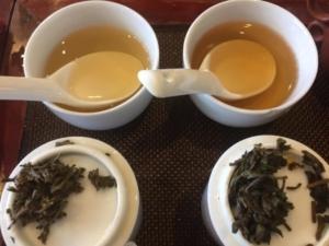 中国茶の比較試験