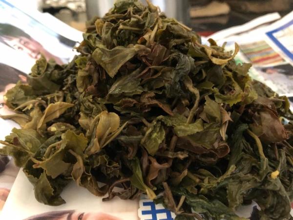 台湾茶の叶底