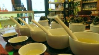 中国茶の比較テスト風景