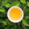 茶葉とお茶