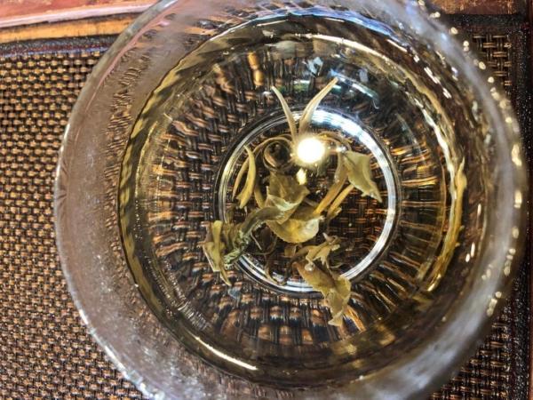 茉莉花 小龍珠 茶湯