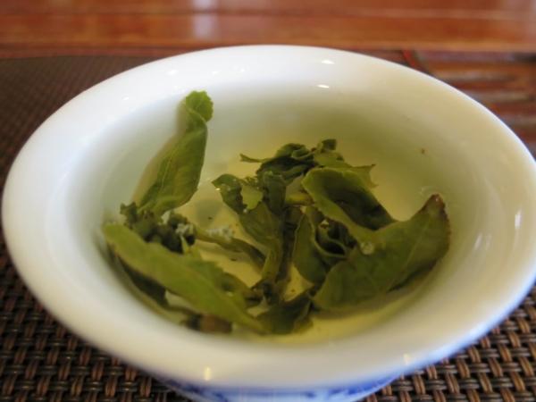 阿里山烏龍茶 茶湯