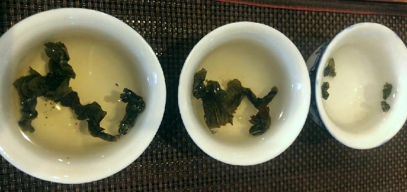 色々な烏龍茶