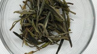 君山銀針 黄茶 茶葉