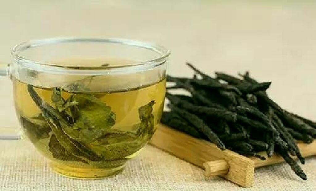 苦丁茶の茶葉と茶湯のイメージ