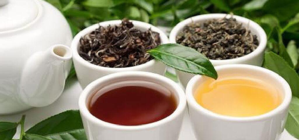 烏龍茶の発酵の違い