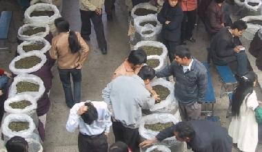 中国茶の市場
