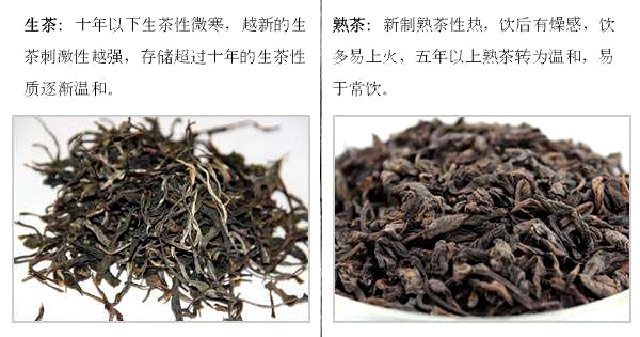 プーアル生茶と熟茶の比較