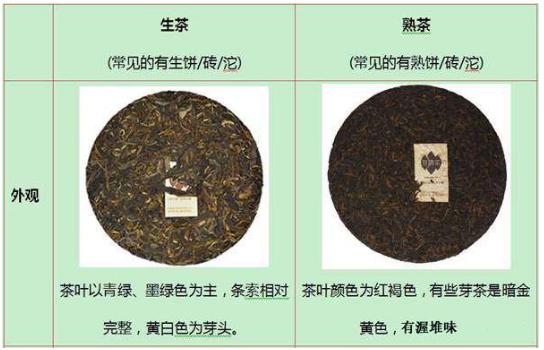 プーアル茶熟茶と生茶の外観の違い