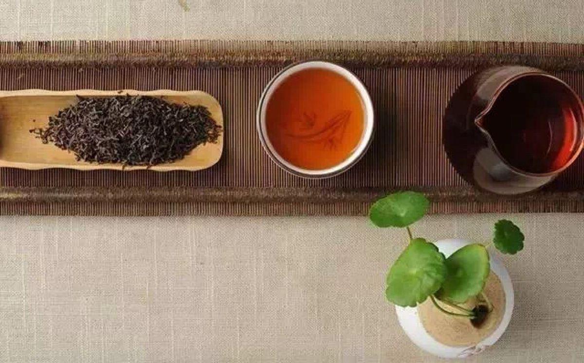 プーアル茶 イメージ