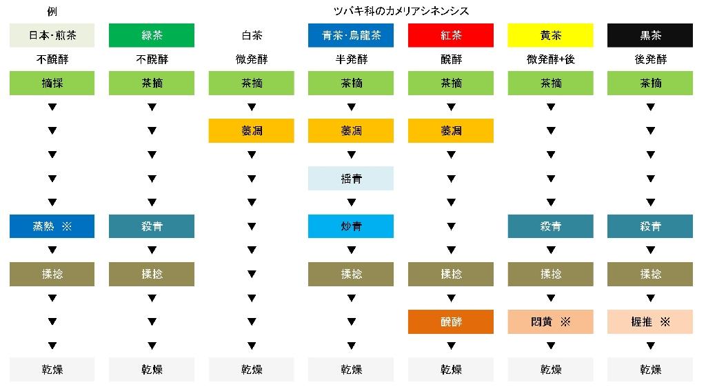 お茶の製造工程表
