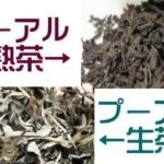 熟茶と生茶のイメージ