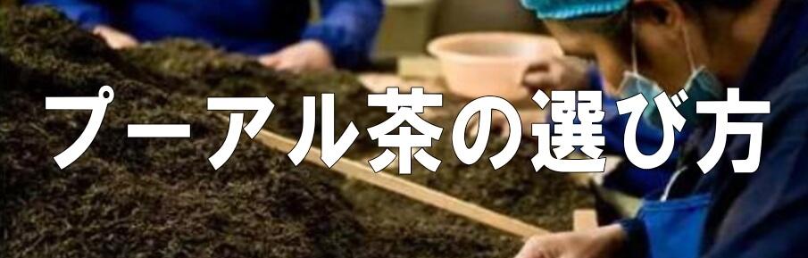 プーアル茶の選び方