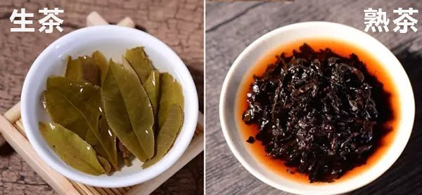 プーアル生茶と熟茶の茶葉