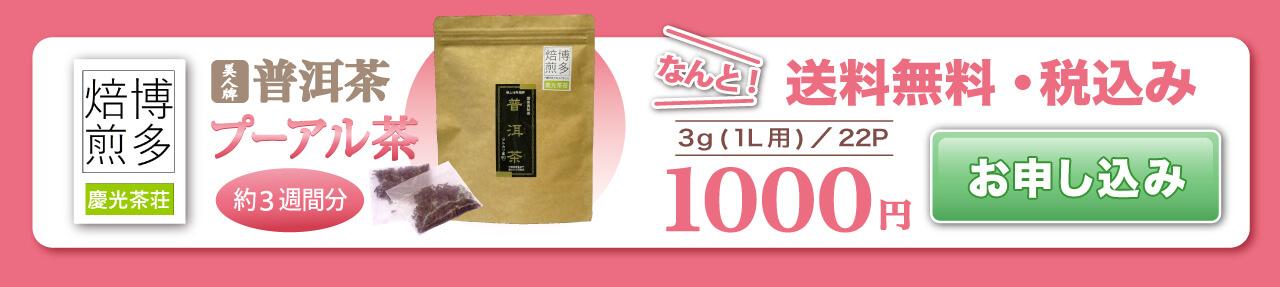 プーアル茶のお試しは1000円から 送料無料 お申込み