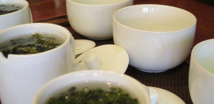 中国茶 台湾茶 ティスティング
