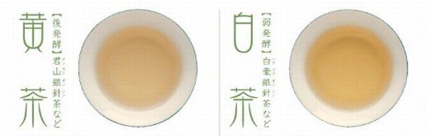 中国茶六大茶分類とは 白茶 黄茶