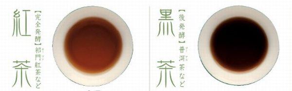 中国茶六大茶分類とは 黒茶 紅茶