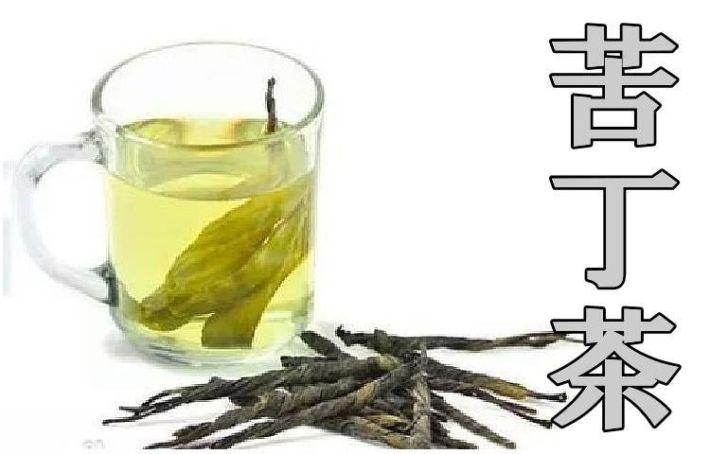 苦丁茶 一葉茶 イメージ