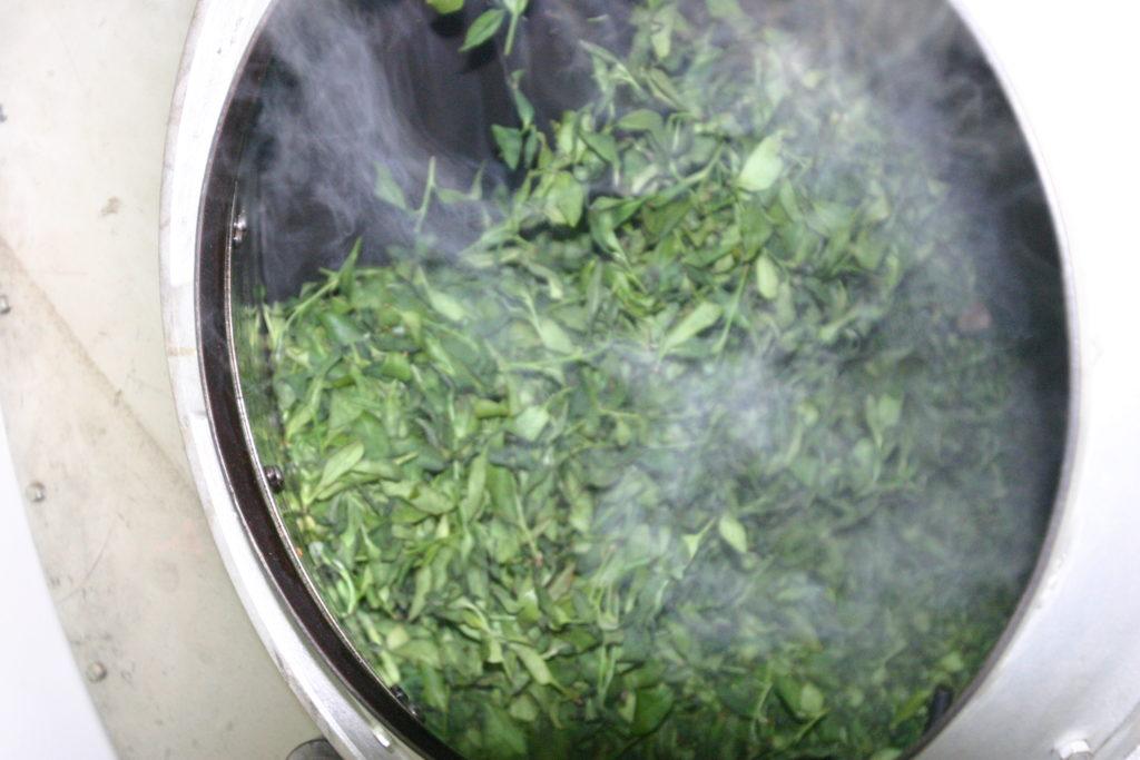殺青される烏龍茶の茶葉