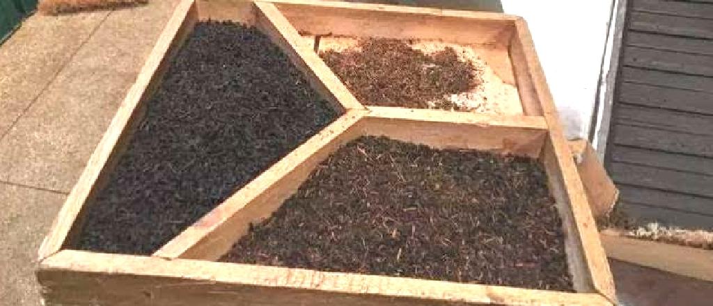 中国紅茶の紅茶の形状種別