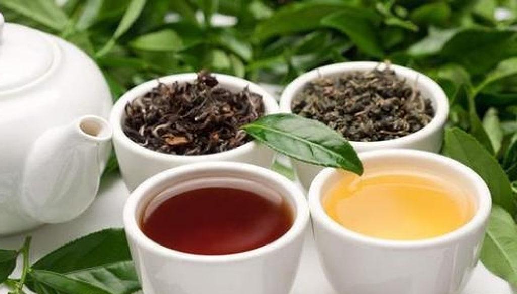 コーヒーとお茶のイメージ