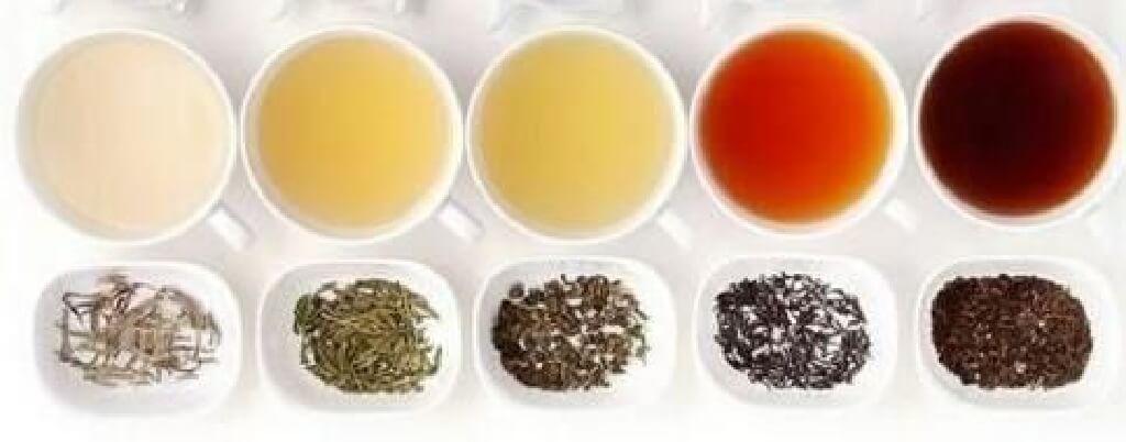お茶の発酵イメージ