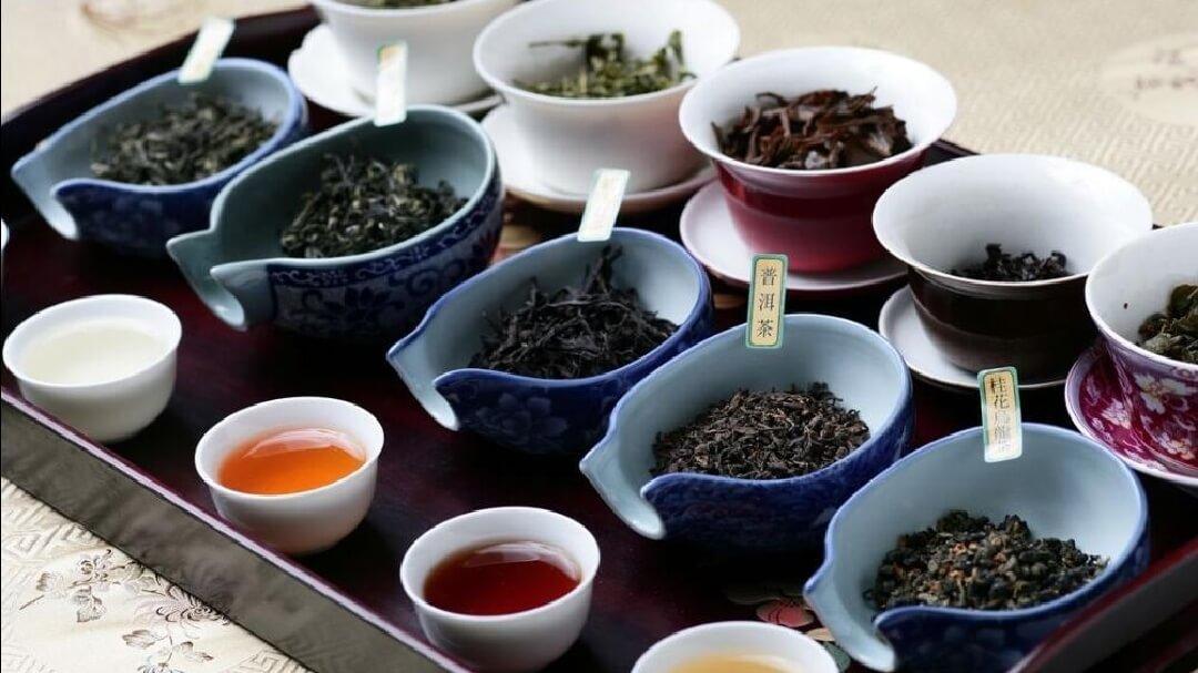中国茶の発酵による違い 比較イメージ