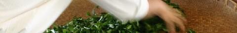慶光茶荘の台湾茶・中国茶への安全基準