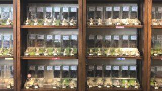 慶光茶荘のお茶展示状況