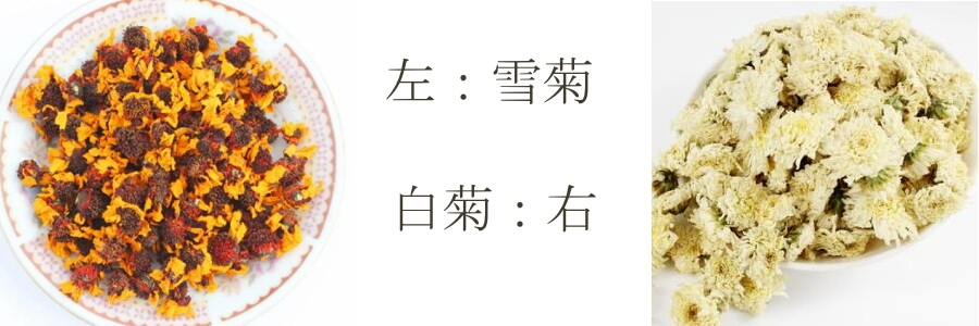 雪菊茶と白菊の比較